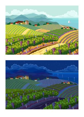 ブドウ畑と山の panoram と農村風景。昼と夜。