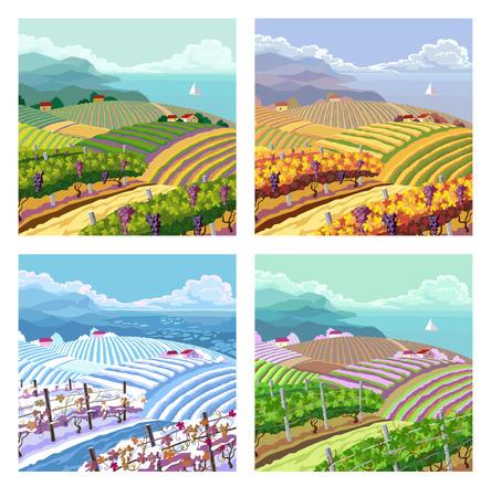 four season: Rural landscape with vineyard and mountain panoram. Four season.