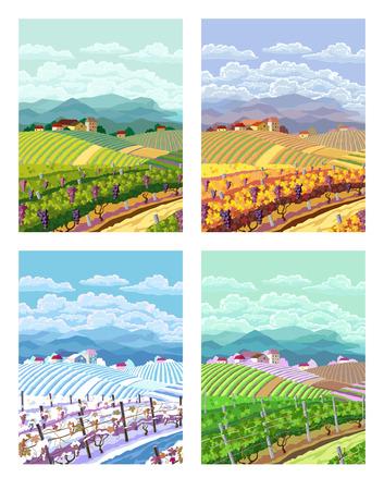 ブドウ畑と山の panoram と農村風景。フォー シーズン。
