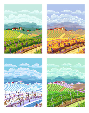 row houses: Rural landscape with vineyard and mountain panoram. Four season.