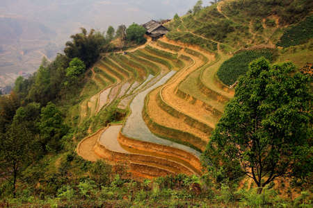 A scenic view of a traditional farm and its ricefield terraces in Sapa, North Vietnam
