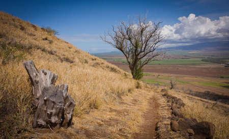 The Lahaina pali trail. Maui, Hawaii. Haleakala Volcano in the background.
