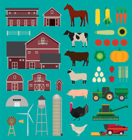 sheep farm: Farm and agriculture infographic set