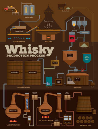 Detailed whisky production process from barley grain to filling casks