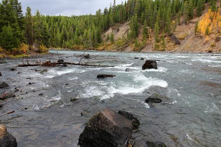 rushing water: Rushing water in rocky Colorado river Stock Photo