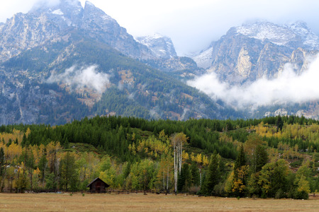 country living: Cabin on a small ranch set among the tall aspen and pine trees at the base of the mountains