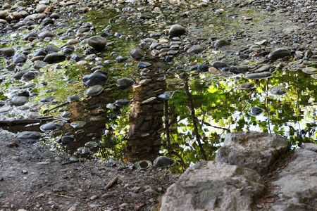 lonliness: A puddle along a rocky path with reflection of life of brilliant green leaves and trees
