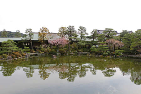 Park and temple in Kyoto in Japan for cherry blossom springtime 스톡 콘텐츠