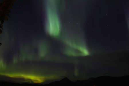 Northern Lights over Iceland clear sky