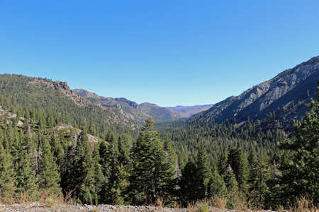 Stanislaus National Forest in California USA 스톡 콘텐츠