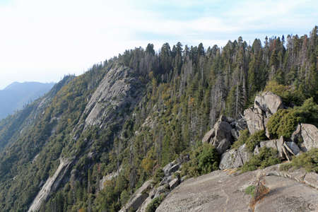 Viewpoint in Sequoia National Park