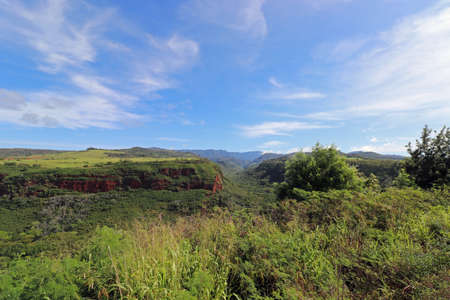 wild green landscape on the island of Kauai 스톡 콘텐츠