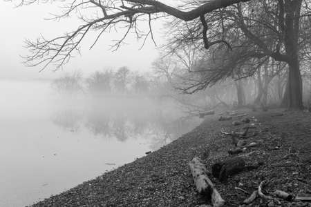 Haunted foggy shoreline in black and white
