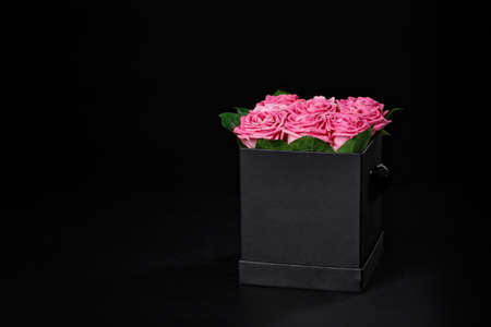 Romantic pink rose in a small square black gift box.