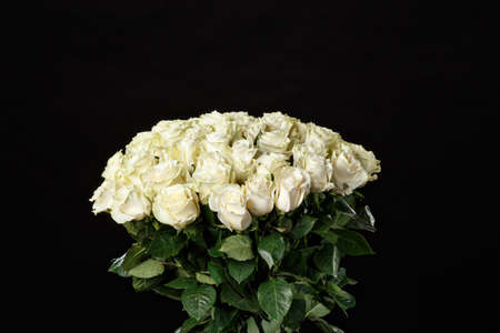 Romantic bouquet of lush white roses on a black studio background, spring is coming, the International Womens Day, 8 March. Stock Photo