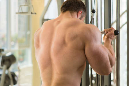 brawny: Muscular man's back. Man doing exercises in gym. Bodybuilder working out in gym. Athlete building up muscles.