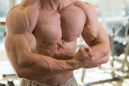 lusty: Muscular torso. Strong man's torso. Picture of muscular torso, arms and abs. Man with huge muscles. Stock Photo