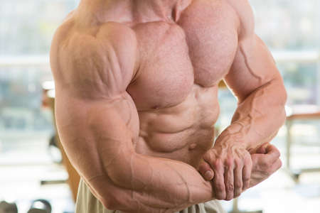 muscularity: Muscular torso and arms. Bodybuilder with huge muscles. Strong man's torso. Picture of muscular torso, arms and abs. Stock Photo
