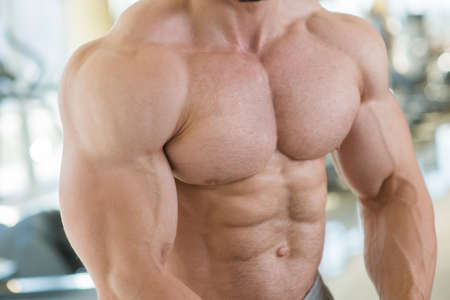 achiever: Muscular torso and arms. Bodybuilder with huge muscles. Strong man's torso. Picture of muscular torso, arms and abs. Stock Photo