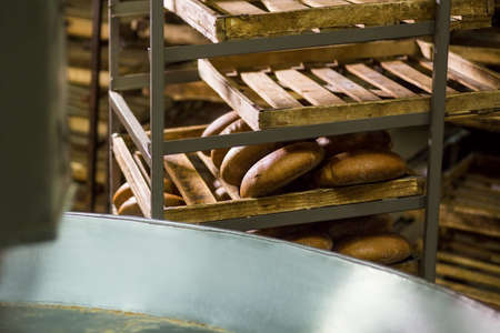 steam output: Hot bread from the conveyor. Stacking of fresh bread on the shelves. Production of bread. Plant produces bread. Confectionery. Baker bakes bread. Stock Photo