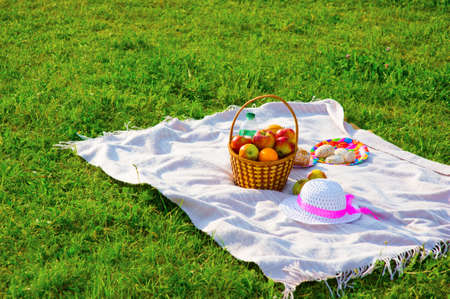 coverlet: Picnic on the lawn. Objects for picnic  on a coverlet. Weekend. Stock Photo