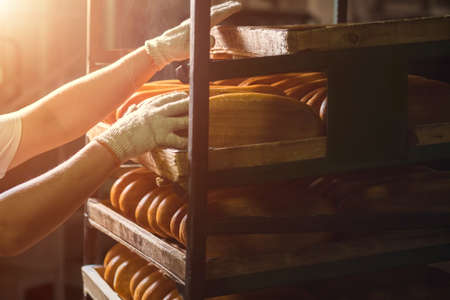 sulight: Hand touching shelves with bread. Shelves with loaves of bread. Another one is ready. Fresh and soft. Stock Photo