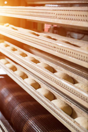 automatically: Baking of bread at the bakery. Great bakery. Production of buns. Workshop of making desserts. Bread baking in the automatically oven.