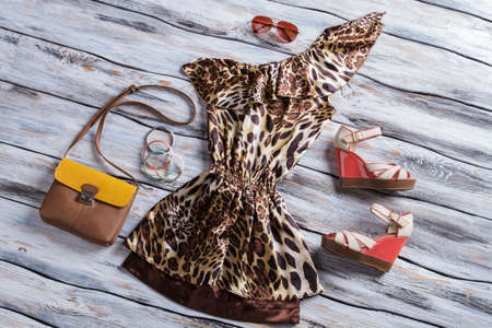 low prices: Leopard dress with bicolor purse. Aviator sunglasses and colorful bracelets. New items on showcase. Low prices for designer clothes. Stock Photo