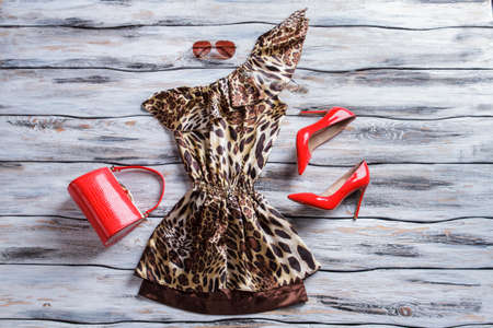 tacones rojos: Leopard dress and red heels. Bright red purse and shoes. Womans attractive outfit with sunglasses. Brilliance and originality.