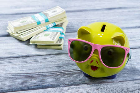 bundles: Lime piggy bank in sunglasses. Bundles of US dollars. Big money for luxury travel. Live in grand style. Stock Photo