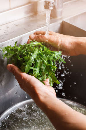 roquette: Hands washing roquette leaves. Mans hands wash greenery. Fresh and tasty. Charge yourself with vitamins. Stock Photo