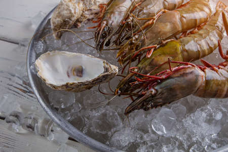 crustacean: Shrimps and seashells. Shrimps on ice beside seashells. Crustacean served at local restaurant. Chef will do his best.