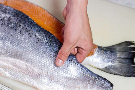 Hand touches raw fish meat. Big piece of raw fish. Fresh salmon for tasty soup. Chef knows simplest recipe. Stock Photo