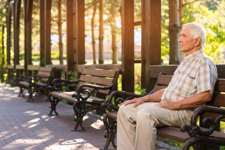 Senior man on park bench. Relaxed elderly male. Spend day in open air. Silence and calmness. Stock Photo