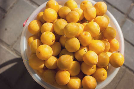 Little yellow fruit. Top view of cherry plums. Grown without use of pesticide. Goods sold at farmers market.