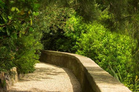 walk path: Green plants near path. Low stone wall. Walk through the park. Stock Photo