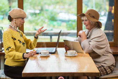 Two senior women in cafe. Laptop, tablet and coffee. Discussing new technologies.