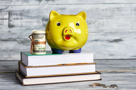 Books, dollars and piggy box. How to acquire knowledge.
