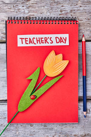 double page: Red notebook, flower and pencil. Sincere congratulation for a teacher. Stock Photo