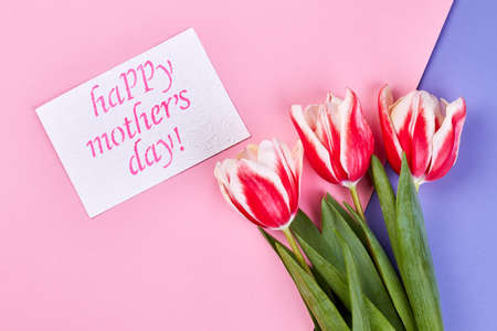 Flowers on coloured surface. Thank you mother. Stock Photo