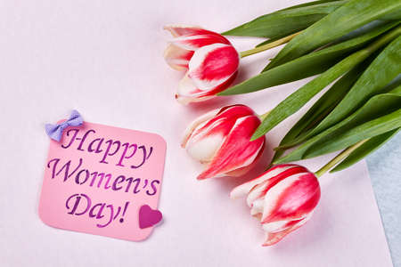 Tender flowers on pastel surface. Romantic congratulation for womens day.
