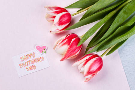 Spring flowers and card. Warmest greetings on Mothers day.