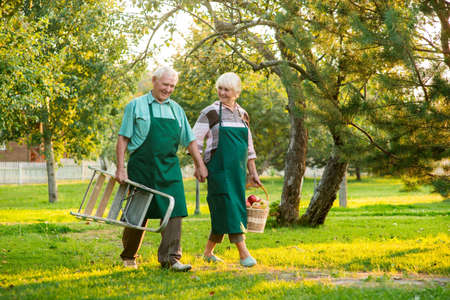 Happy senior couple holding hands. Gardeners in aprons. Part time jobs for seniors.