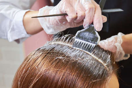Hair dying close up. Brush applying hair color.