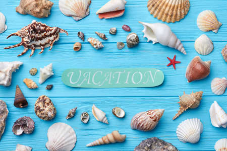 Different sea shells, painted background. Time for vacation in tropical side. Stock Photo