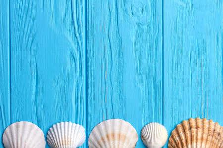Row of seashells, blue background. Five scallops on wooden floor. Stock Photo