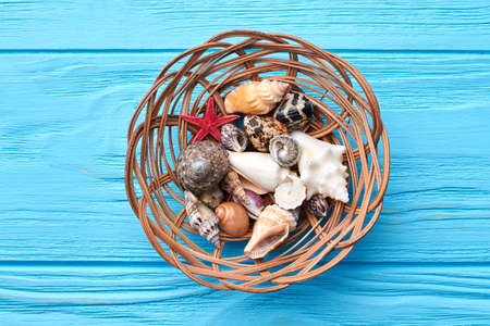 oceanic: Basket full of sea shells. Oceanic shells in decorative basket, top view. Stock Photo