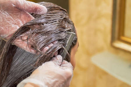 Hair dying process, macro. Hands of beautician and hair. Stock Photo
