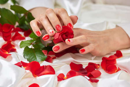 Fresh rose, female hands, petals. Valentines day concept with rose petals on white silk. Romanic manicure and red rose.