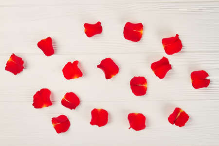 Red rose petals on white background. Bright flowers petals on white woden table. Symbol of love and romance. Valentine day celebrations conept.
